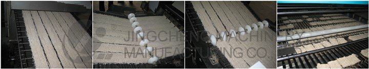 Fried Instant Noodles Processing Plant